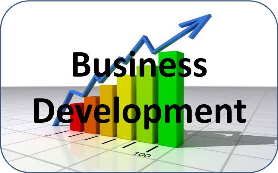 Business Development Consulting Services
